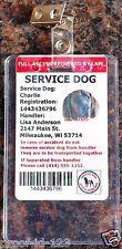 2 Vertical ADA ID Badge Plastic Holder Metal Clip Bus Pass ID Card School Dog