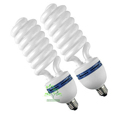 2x80w 5500k Photography Lighting Lamp light bulb E27 CFL Energy Saving Daylight