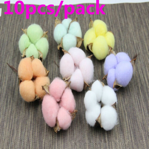 DIY Natural Cotton Dried Flowers Heads Branch Artificial Festival Party Decors //