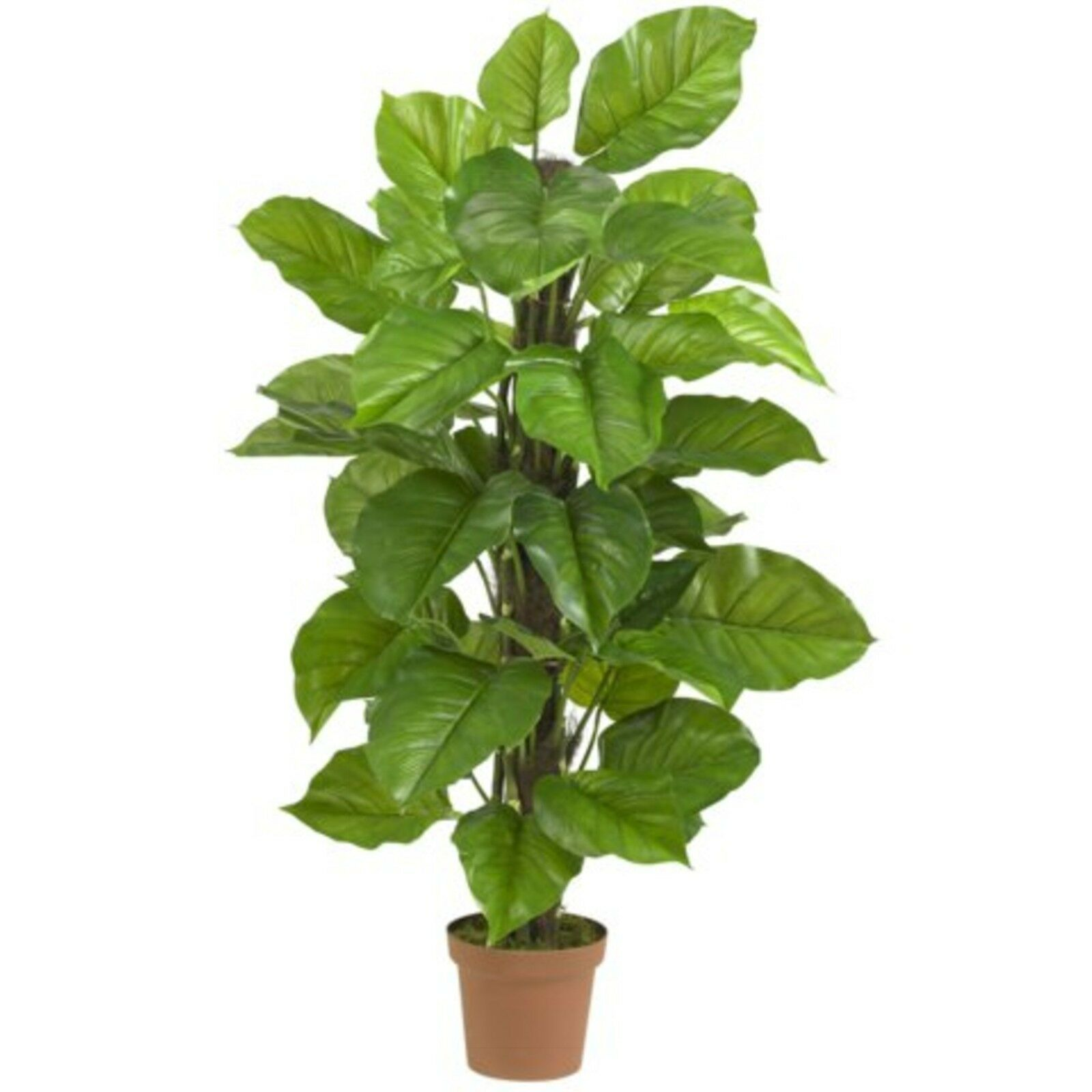 Decorative Artificial 52  Large Leaf Philodendron Silk Tree Plant Real Touch
