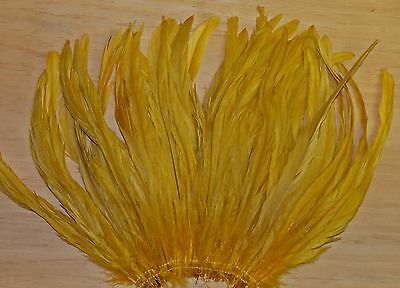 50 GOLDEN YELLOW COQUE ROOSTER TAIL FEATHERS (8 to 10 inches)
