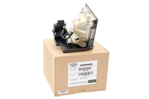 Alda PQ Referenz Beamerlampe mit Gehäuse Lampe für SANYO PLC-XF35N Projektoren