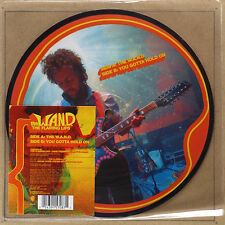"""THE FLAMING LIPS - W.A.N.D. ***7""""-Vinyl Picture Disc***NEW***"""