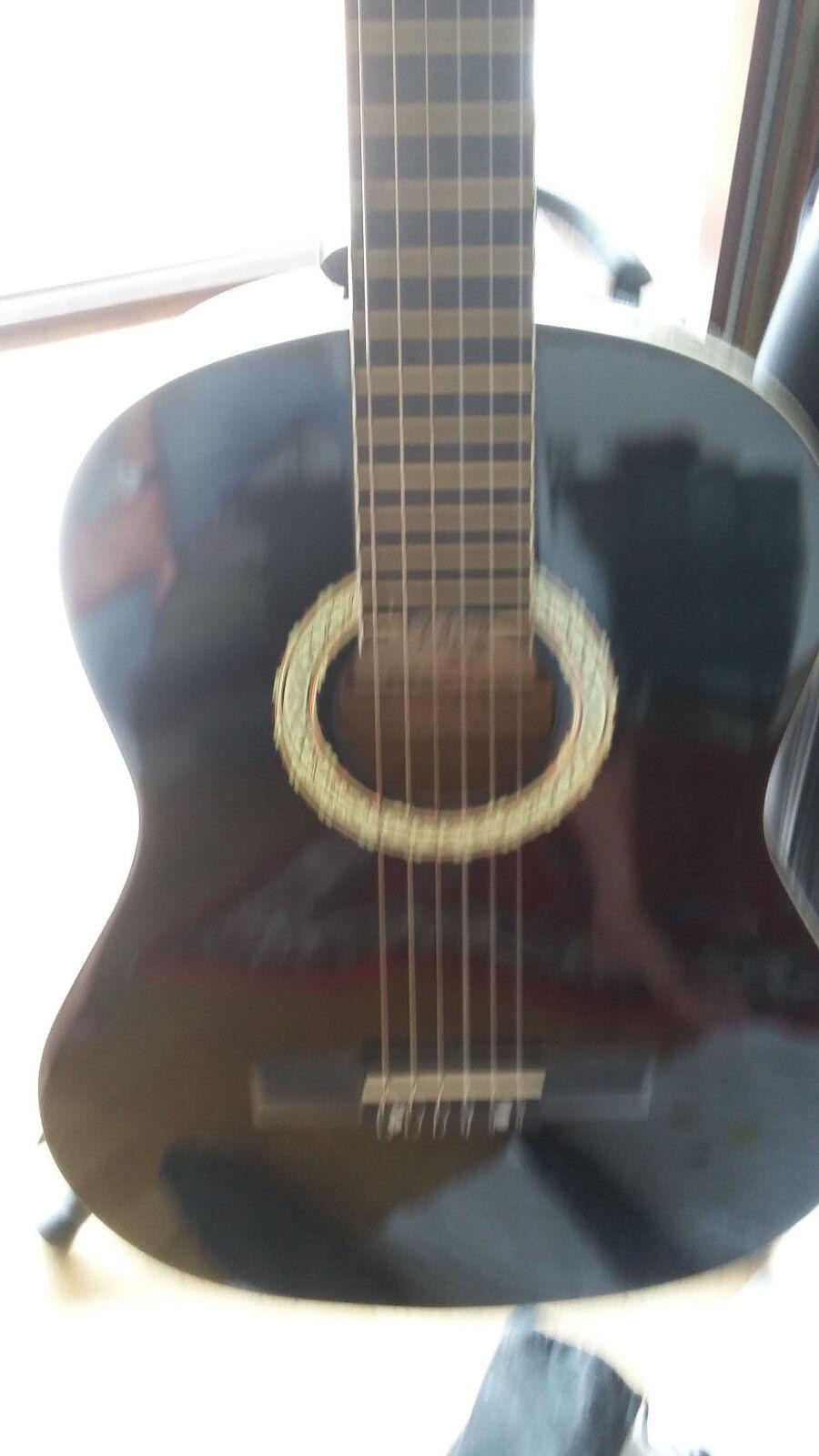 Gitarre Akustik Gitarre Model