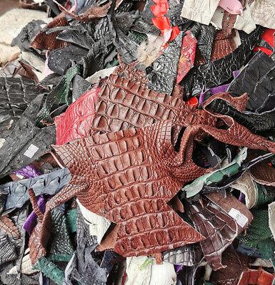 PELGIO Genuine Crocodile Skin Leather Hide Pelt Scraps 100 gram Brown Free Ship