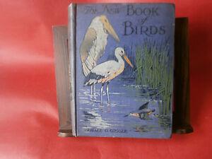 Horace-G-Groser-034-The-new-book-of-birds-034