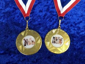 Great-Medal-Cat-Competition-Dog-Show-Best-Coat-with-ribbon-Bargain-Trophy