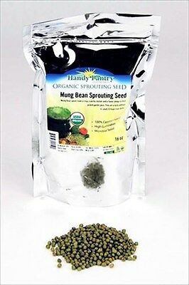 1 LB- ORGANIC MUNG BEAN SPROUTING SEEDS - GROW SPROUTS, FOOD STORAGE, CHINESE
