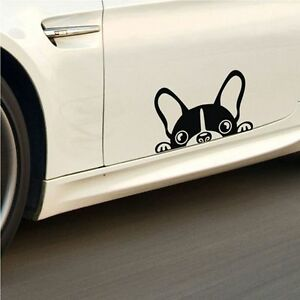 17 8 6 6cm All You Need Is Love And A Dog Cute Car Decals Doggier