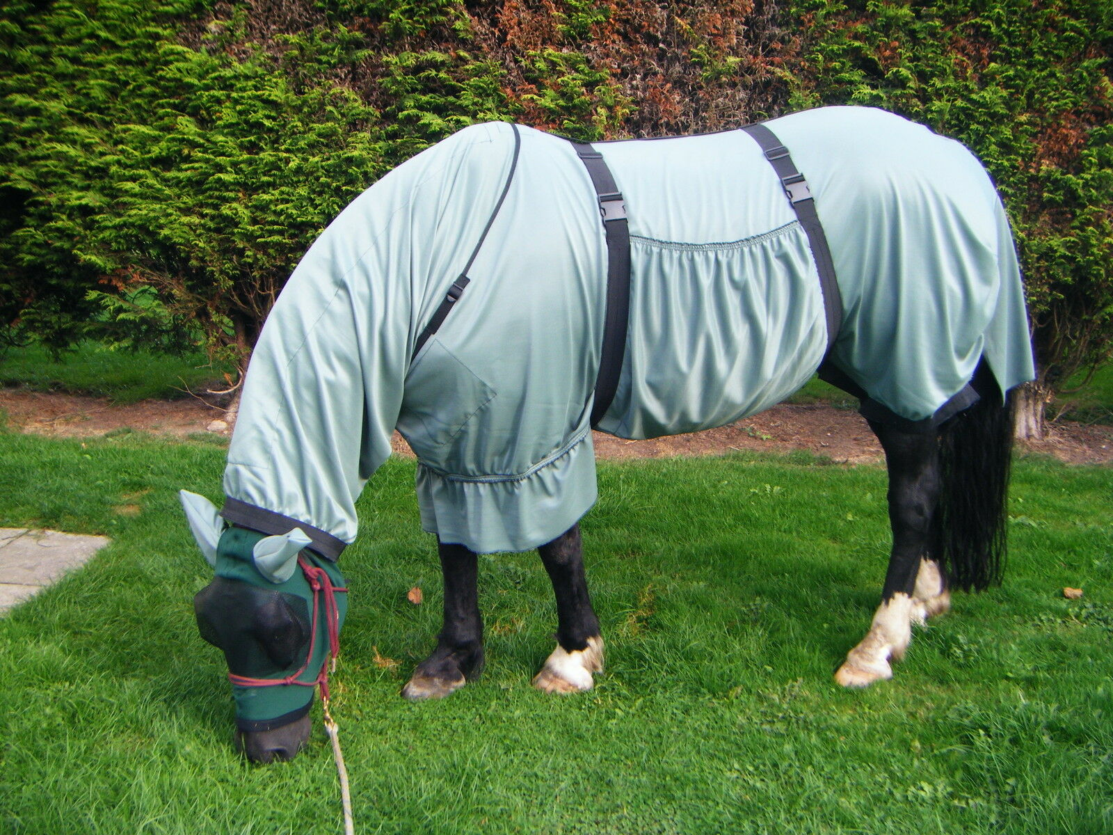 SWEET RUG ITCH RUG SWEET - MADE TO MEASURE - 10HH- 16HH sweetitch 32cb90