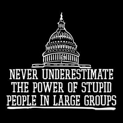 Political Never Underestmate The Power of Stupid People In Large Groups T-Shirt