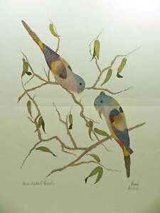 Blue-Bonnet-Parrots-by-Moran-Two-Small-Birds-Bluebonnet-Wall-Decor-Art-Print