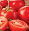Tomato MOBIL seeds red tomatoes organic seeds Ukraine 1g Farmer/'s dream
