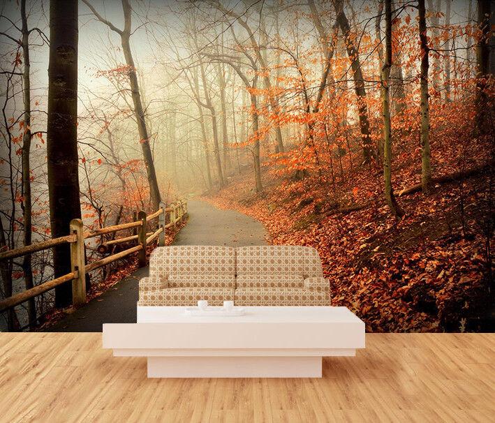 3D  Park Mist Forest  7 Wall Paper Murals Wall Print Wall Wallpaper Mural AU Kya