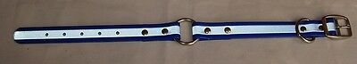 BLUE REFLECTIVE DAYGLO BIOTHANE DOG COLLAR,WATERPROOF,STAINLESS STL.
