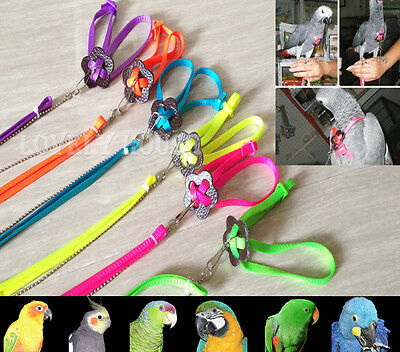 Adjustable Parrot Bird Harness for Training Playing 6colors