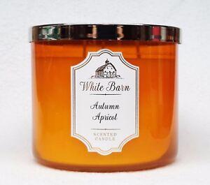 Apricot Mango 3 Wick Candle 10 oz