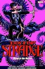 Doctor Strange Vol. 3: Blood in the Aether by Panini Publishing Ltd (Paperback, 2017)