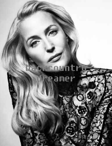 GILLIAN ANDERSON Poster Celebrity Hollywood Poster 6 36 x 24