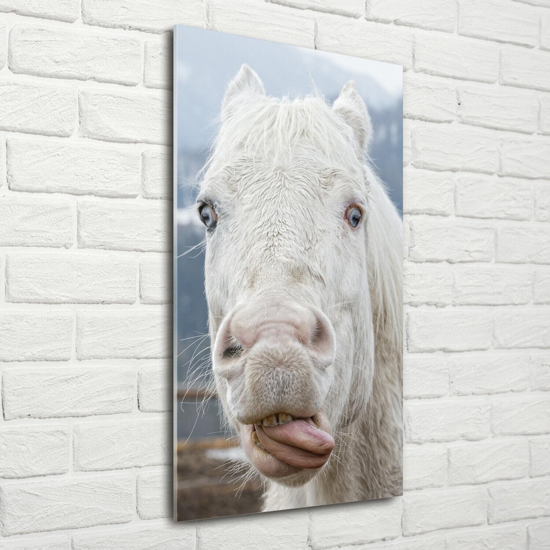 Wand-Bild Kunstdruck aus Acryl-Glas Hochformat 70x140 Weißes Pferd