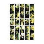 5 Years by Richard Youngs/Simon Wickham-Smith & Richard Youngs (CD, May-2006, VHF)