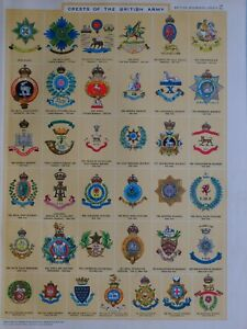 1919-PRINT-CRESTS-OF-THE-BRITISH-ARMY-QUEENS-ROYAL-BUFFS-IRISH-REGIMENT-FOOT