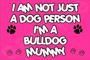I-039-m-non-solo-a-Dog-PERSONA-I-039-M-un-Bulldog-Mummy-Magnete-del-frigorifero-REGALO