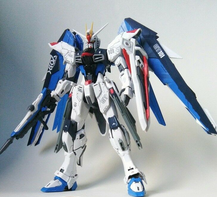 Gebaut MG Gundam Seed Freedom 1  100 Assembled Action Figur