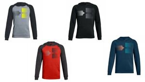Under-Armour-Big-Boys-Rival-Logo-Hoodie-Sweatshirt-Pullover-Size-YSM-YMD