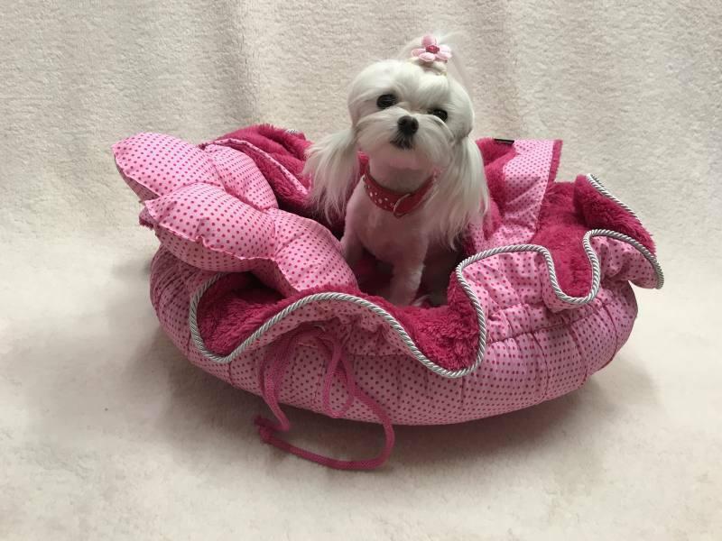 Hundebett FLOWER pink ,Hunde Schlafplatz Limited Edition Handarbeit