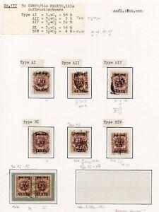 Memel-Nr-172-Studie-auf-5-Albenseiten-in-Einheiten-Typen-PLATTENFEHLER-C0255