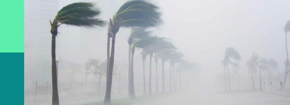 Support recovery efforts in the Bahamas - Hurricane Dorian Relief