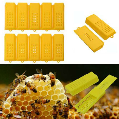 10X Extended Queen Bee Cage Catcher Trap Case Plastic Beekeeping Tool Yellow