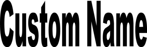 """NAME Custom 5/""""X46/"""" Decal Letters Car Window WINDSHIELD Sticker Personalized"""