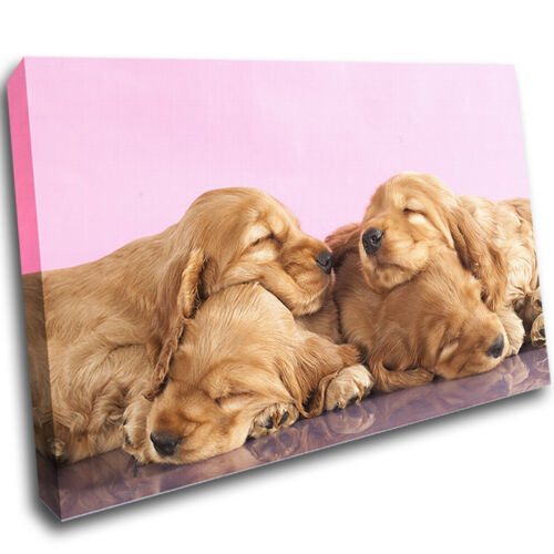 Canvas Poster Wall Art Print Picture Framed Dog Puppy Animals Kids Bedroom AD034