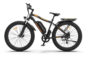 GLW Electric Bike Bicycle 750W 48V 13ah Li Battery Fat Tire Rear Rack F\R Light