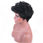 Fashion-Afro-Synthetic-Short-Curly-Black-Hair-Wig-for-Women-Heat-Resistant-Wigs thumbnail 6
