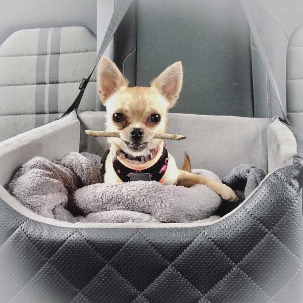 Hundeautositz Hunde Autositz DELUXE ELEGANCE Hundesitz,Transport,Reise mit Hund