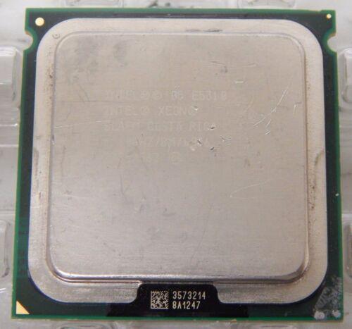 Intel Xeon Quad Core E5310 1.60GHz 8M 1066 Socket 771 Processor LGA771 SLAEM