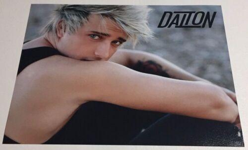DALTON RAPATTONI 8x10 PHOTOGRAPH Acoustic Attempt Tour Official Merch Picture