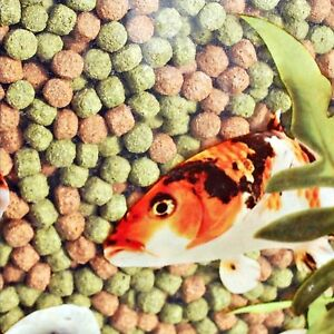 Webbox rainbow pellets koi carp all pond fish food for Best food for koi fish