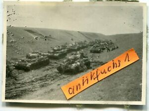 Foto - 2 : Deutsche Panzer-Abteilung in der Kalmückensteppe im 2.WK