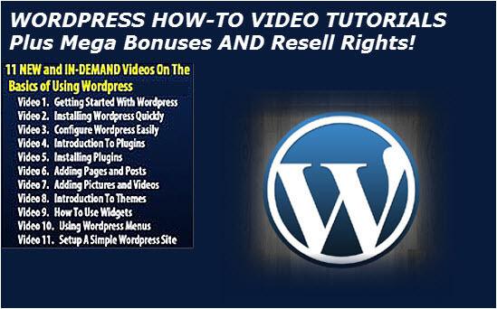 WordPress How to Video Tutorials Plus 500 WordpressThemes And Bonuses - CD 2