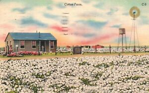 Vintage Postcard 1944 Cotton Farm Home with Windmill  & Water Tower
