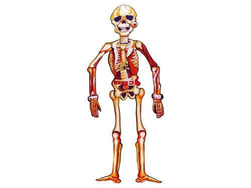 Esqueleto de cartón 75 cm horror colgando-decoración móviles Halloween calavera