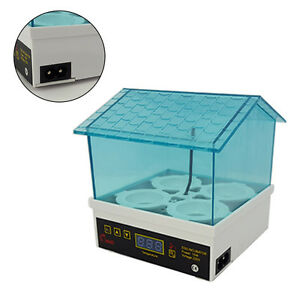 Digital Clear Bird 4 Egg Incubator Hatcher Automatic Turning Temperature Control