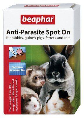 Beaphar Anti-Parasite Spot on for small animals, rabbits,guinea pigs,ferrets,rat