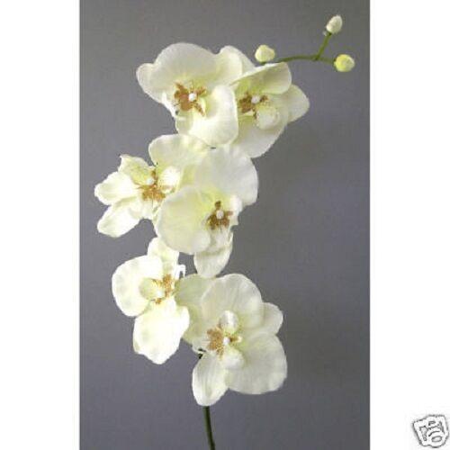 Kunstblumen hochwertiger Orchideenzweig 78cm, Orchidee in CREME-48