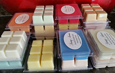 SCENTS Listing #1 Soy Wax Clamshell Break Away tart melt wickless candle 300