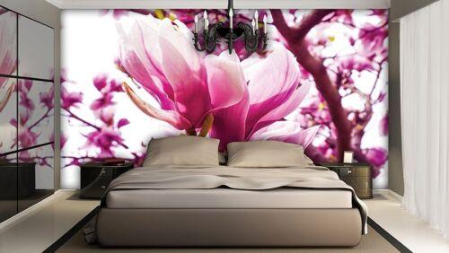 Wall Mural Photo Wallpaper MODERN PINK FLOWERS ROSE peony marsh marigold luxury